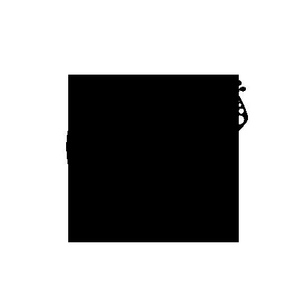 NutekIbiza